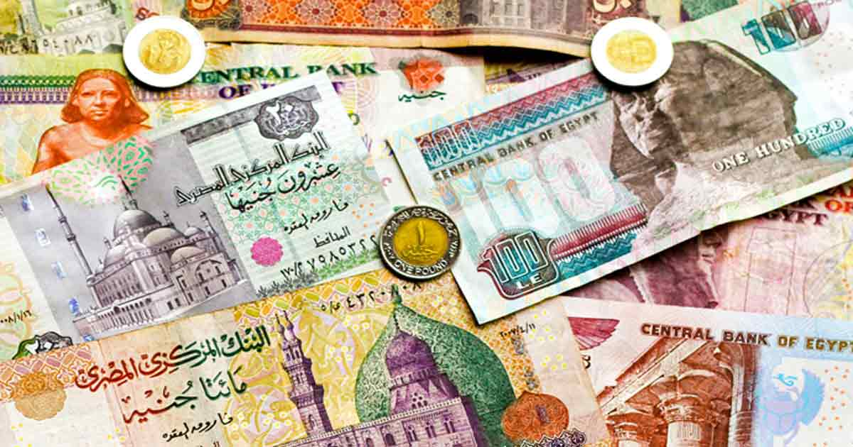 Forex broker in egypt